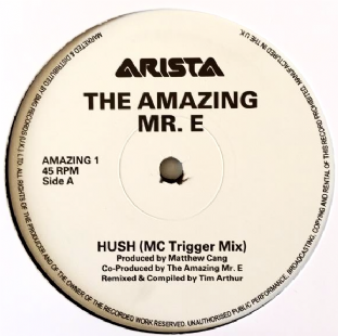 "The Amazing Mr. E ‎- Hush (12"") (Promo) (VG+/NM)"